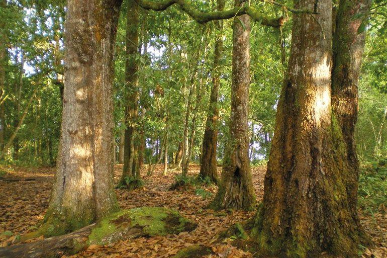 Finestres sostenibles i sense manteniment - Grabalosa